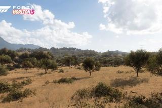 Официальные скриншоты грядущей Forza Horizon 5