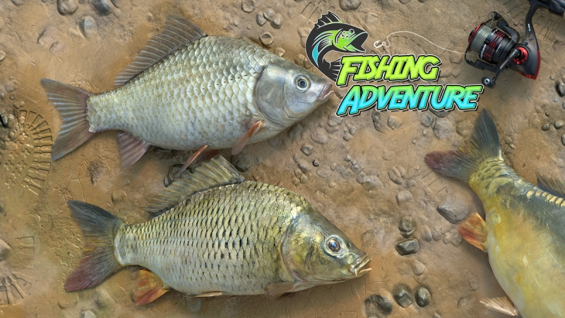 Fishing Adventure Is Now Available For Xbox One And Xbox Series X S